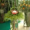 Экзотические букеты — цветы и растения из Австралии