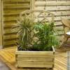 Деревянные контейнеры для растений – цветов и овощей