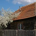 румынский старый бревенчатый дом