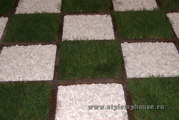 Посадка газона своими руками на даче — пример креативного решения