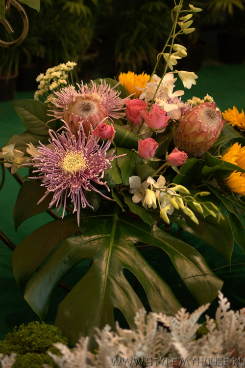 Цветы-Flowers-2011 выставка на ВВЦ — фотоотчет