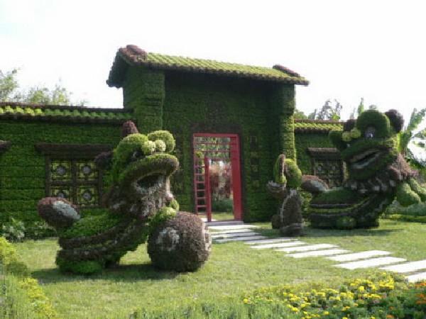 как создать Топиари из живых растений