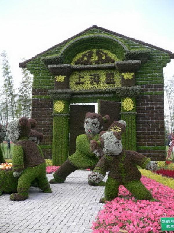 стильное Топиари из живых растений