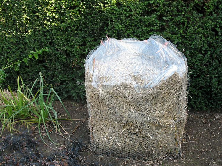 Подготовка растений к зиме - укрытие