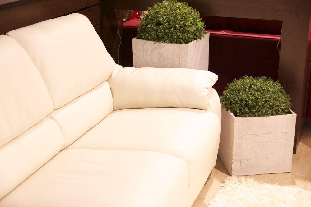 кашпо для колмнтных растений для гостиной